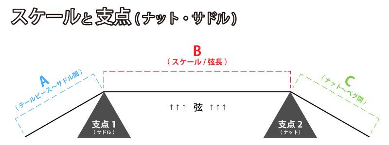 スケール(弦長)と支点の関係