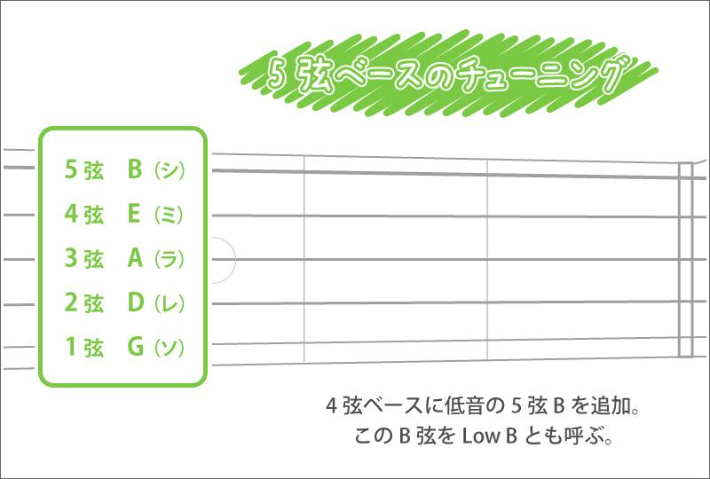 5弦ベースのチューニング音程