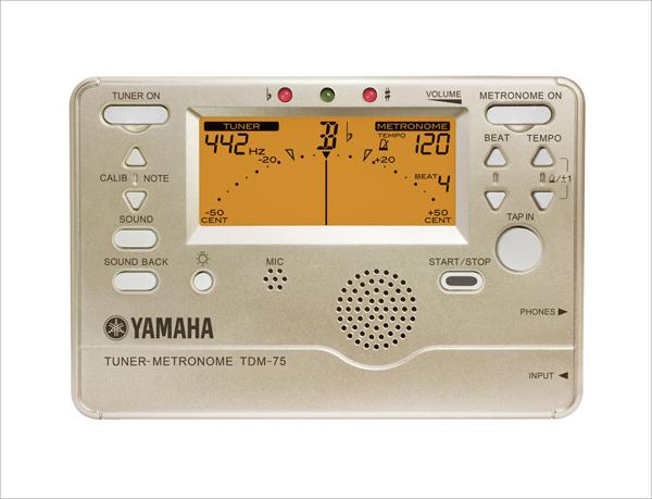 YAMAHAチューメトTDM-75