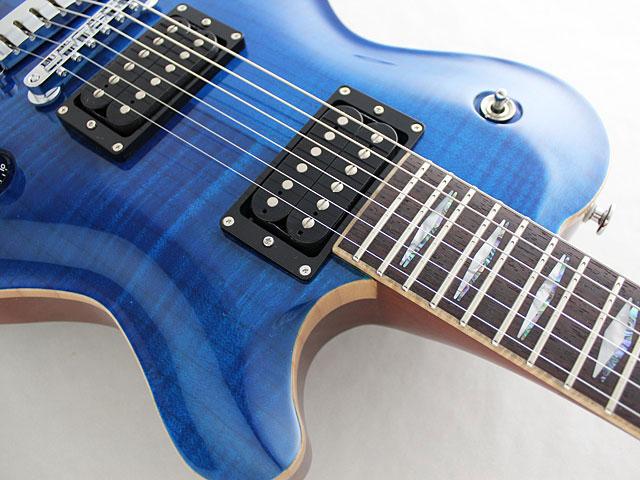 フジゲンCFS搭載のギター